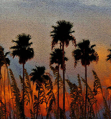 Palms And Sea Oats Antique Style A Print by David Lee Thompson