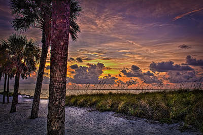 Ocean View Photograph - Palms Down To The Beach by Marvin Spates