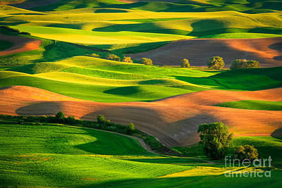 Rural Scenery Photograph - Palouse Fields by Inge Johnsson