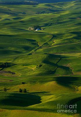 Farmhouse Photograph - Palouse Green by Mike  Dawson