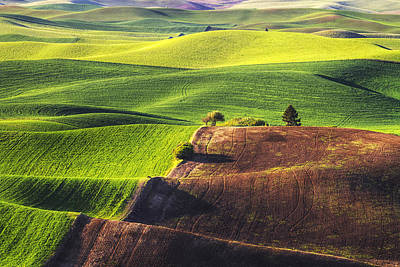 Palouse In Contrast Print by Mark Kiver