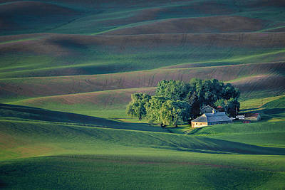 Palouse - Washington - Farms - #3 Print by Nikolyn McDonald