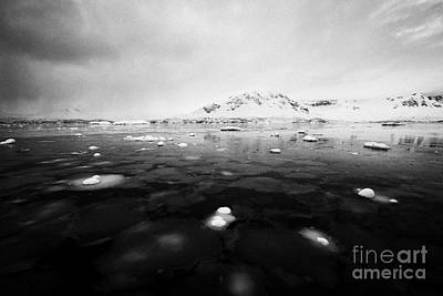 Fournier Photograph - pancake sea ice forming in Fournier Bay on Anvers Island Antarctica by Joe Fox