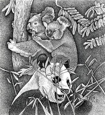 Koala Drawing - Panda And Koala by Brian Gilna