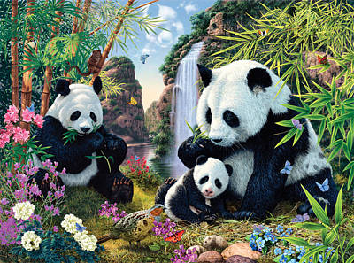 Panda Photograph - Panda Valley by Steve Read