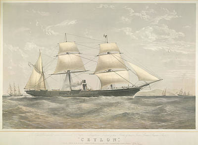 Steamboat Photograph - Pando Steamship 'ceylon' by British Library