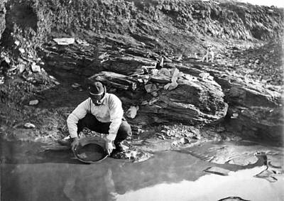 Prospecting Photograph - Panning For Gold In Alaska by Underwood Archives