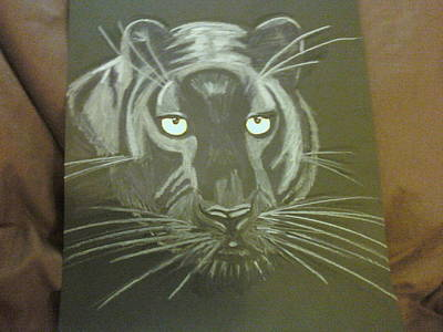 Panther Drawing - Panther by Danita  Higham