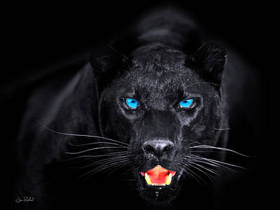 Panther Print by Jean raphael Fischer