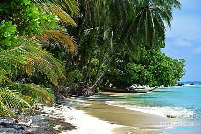 Photograph - Paradise Found by Li Newton