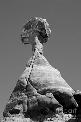 Rimrock Photograph - Paria Utah II by Dave Gordon