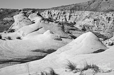 Rimrock Photograph - Paria Utah Iv by Dave Gordon