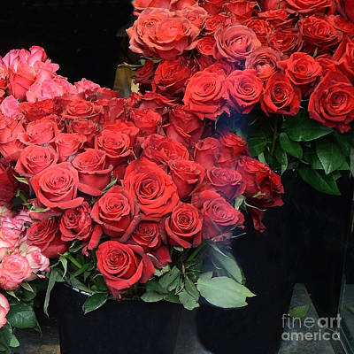 Paris Red French Market Roses - Paris French Flower Market Red Roses  Print by Kathy Fornal