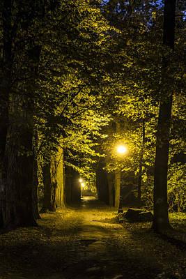 Streetlight Photograph - park Alley by Jaroslaw Grudzinski