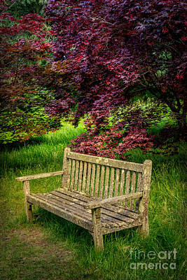 Park Bench Print by Adrian Evans
