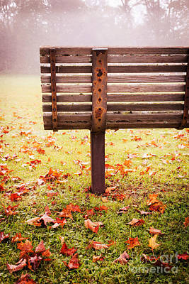 Empty Chairs Photograph - Park Bench In Autumn by Edward Fielding