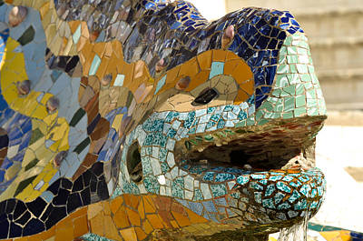 Barcelona Photograph - Park Guell Lizard by Brandon Bourdages