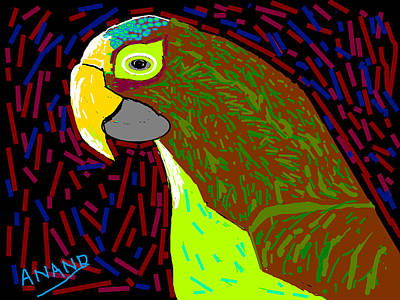 Parrot-3 Print by Anand Swaroop Manchiraju