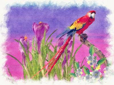 Macaw Art Painting - Parrot by Liane Wright