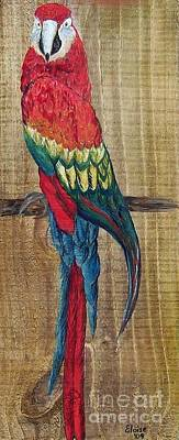 Canary Mixed Media - Parrot - Scarlet Macaw by Eloise Schneider