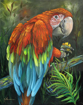Macaw Painting - Parrot Talk - Scarlet Macaw by Kathy Brecheisen