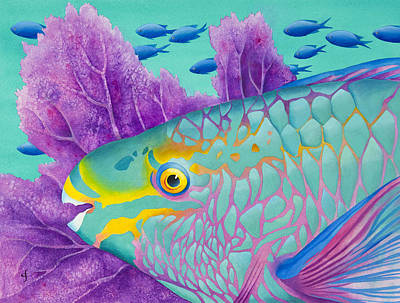 Parrotfish Print by Carolyn Steele