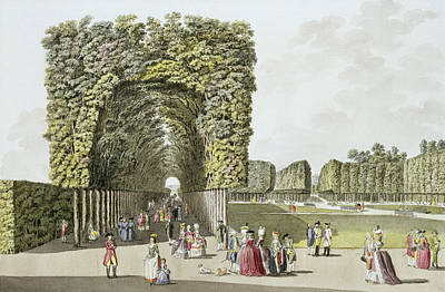 Garden Drawing - Part Of The Garden At Ausgarten by Johann Ziegler
