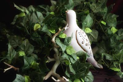 Partridge In The Ivy Print by Tom Mc Nemar