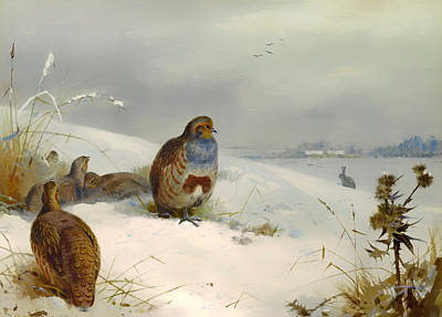 Partridge Painting - Partridges And A Hare In Winter by Mountain Dreams