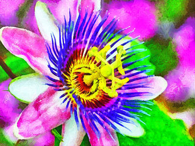 Passiflora Edulis Otherwise Known As Passion Flower Print by Digital Photographic Arts