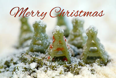 For The Kids Photograph - Pasta Christmas Trees With Text by Iris Richardson