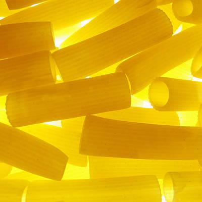 Pasta Rigatoni Yellow Transparent Macro Print by Cindy Xiao