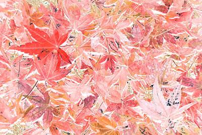 Pastel Impressions Of Autumn By Kaye Menner Original by Kaye Menner