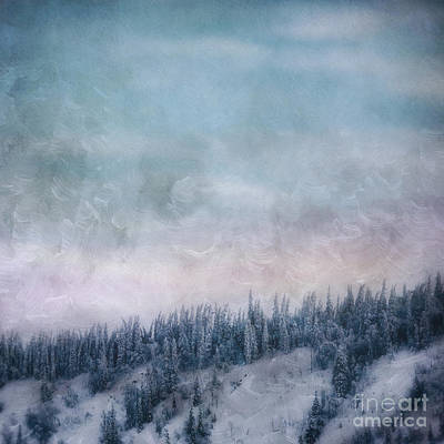 Wintry Landscape Photograph - Pastel Skies by Priska Wettstein