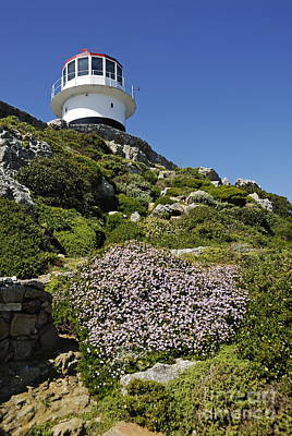 Path Leading To Lighthouse At Cape Point Print by Sami Sarkis