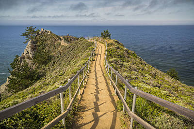 Path To Muir Beach Overlook Print by Adam Romanowicz