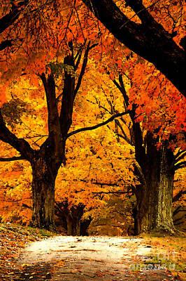Path To Serenity Print by Jim  Calarese
