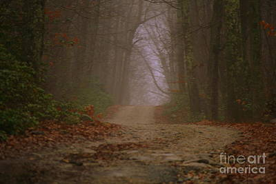 Photograph - Path To Wolf Den  by Neal Eslinger