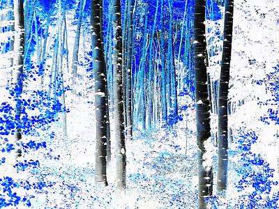 Pathway Digital Art - Pathway Through The Woods by Terril Heilman