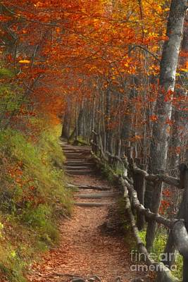 Pathway To Autumn Print by Benanne Stiens