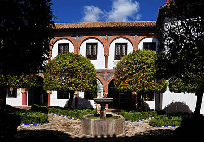 Patio Del Museo Cordobes De Bellas Print by Panoramic Images