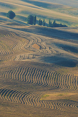 Contour Farming Photograph - Patterns Of The Palouse by Latah Trail Foundation