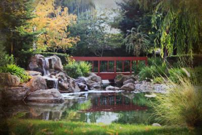 Zen Digital Art - Peaceful Dreams by Laurie Search