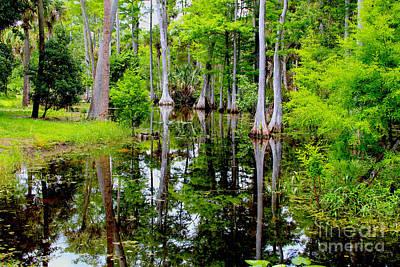 Alligator Bayou Photograph - Peaceful Lake by Carey Chen