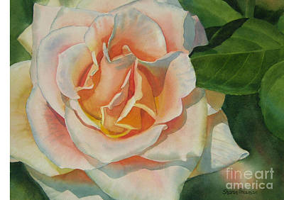 Peach And Gold Colored Rose Print by Sharon Freeman