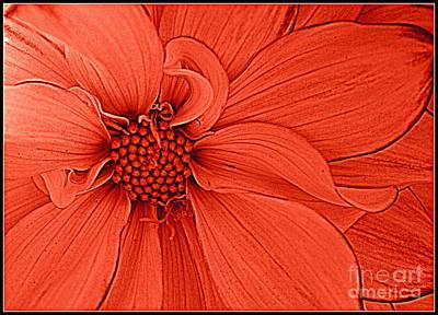 Peach Blossom Print by Dora Sofia Caputo Photographic Art and Design