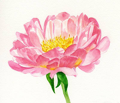 Peach Colors Painting - Peach Colored Peony Blossom by Sharon Freeman