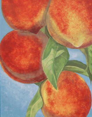 Peach Pizazz Print by Debora Baxter Jackson