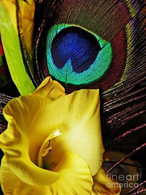 Peacock Feather And Gladiola Print by Sarah Loft