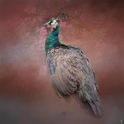 Peacock Photograph - Peacock In The Rose Garden - Wildlife by Jai Johnson